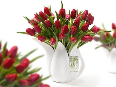 Gieter_wit_Tulp_rood_01